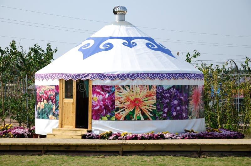 Mongolia pakunek zdjęcie stock