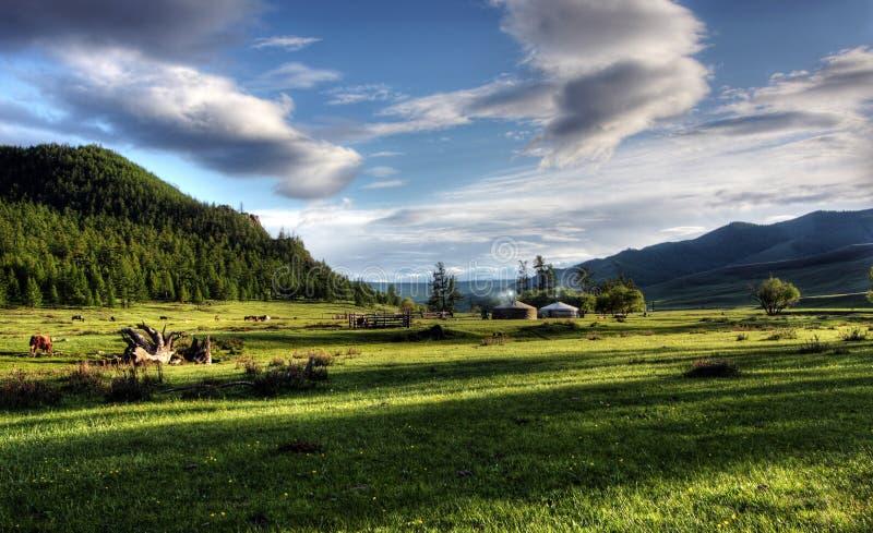 Mongolian dwelling stock photos