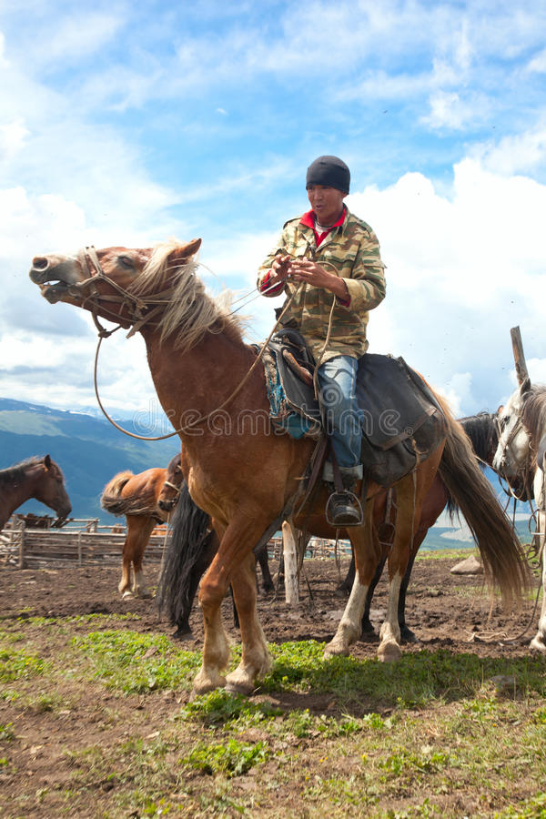 Mongolian herdsman royalty free stock images