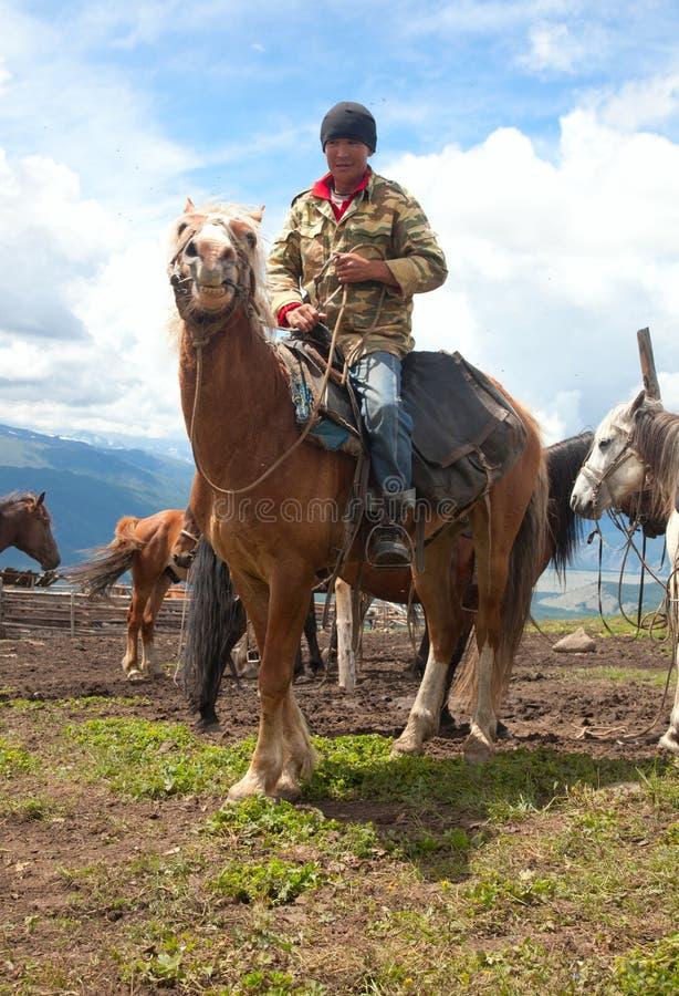 Mongolian herdsman stock photos