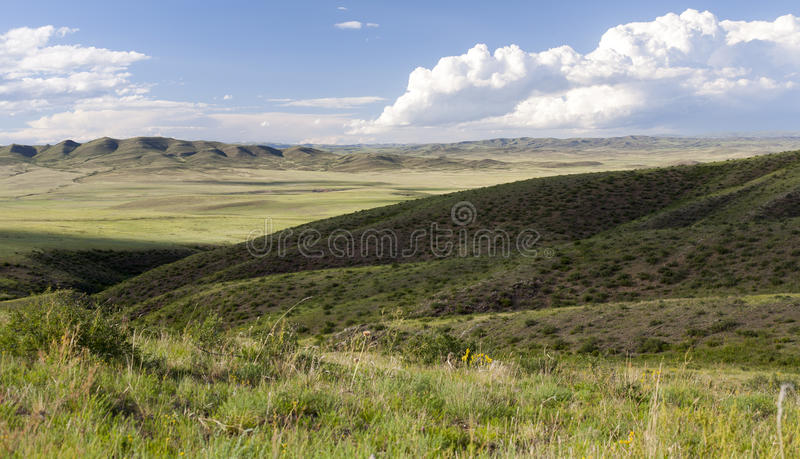 Download Mongolian Landscape With Horses Stock Photo - Image: 36743260