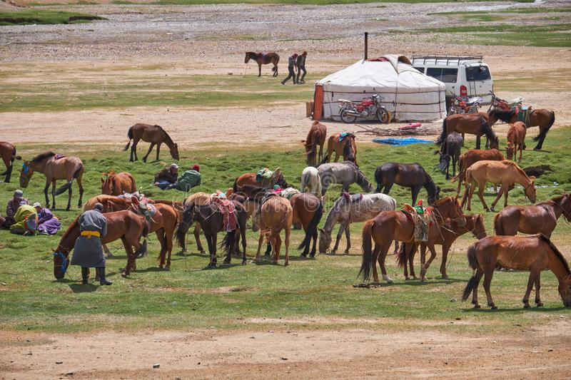Mongolian nomad camp. Horses and car near traditional mongolian yurt stock photo