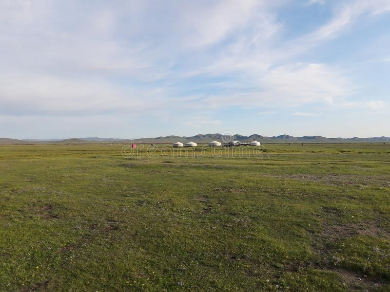 Mongolian Steppe with Gers. Mongolian green steppe with white gers in the background stock photos