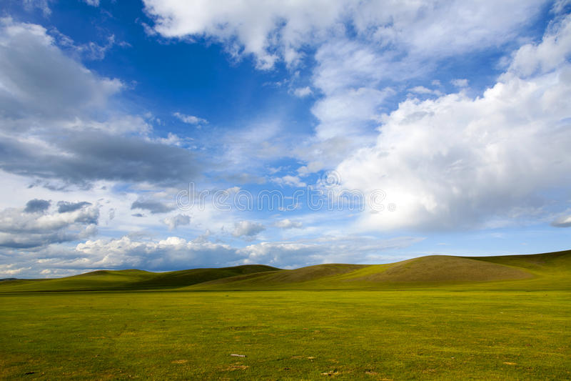 Mongolian Steppes Stock Photography