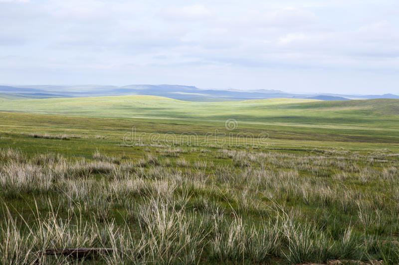 Download Mongolian Steppes stock image. Image of steppe, steppes - 36742979