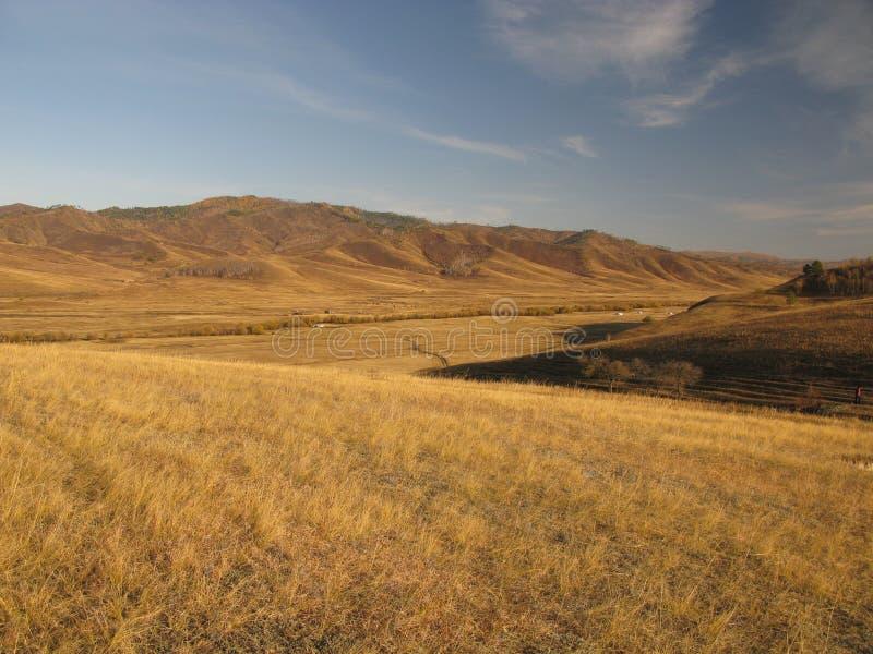 Mongoliet landskap royaltyfri foto