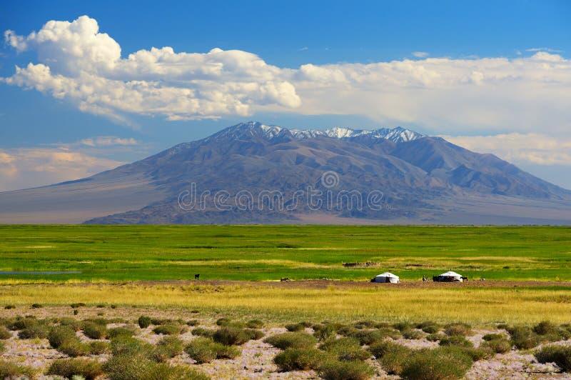 Mongoliet landskap royaltyfri fotografi