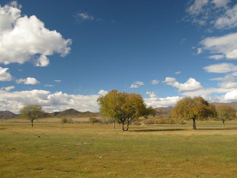 Mongoliet - landskap nära den Selenge floden royaltyfri fotografi