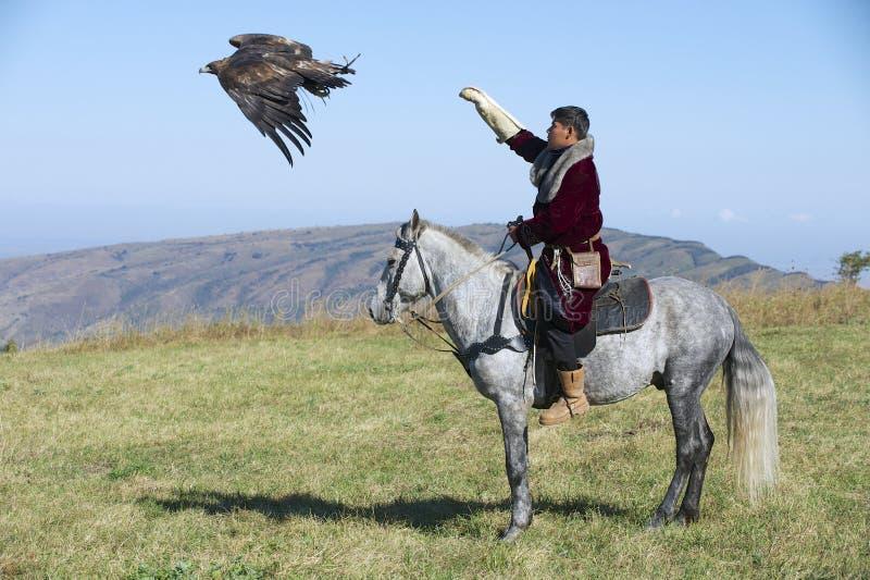 Mongolischer Jäger startet Steinadler, um Opfer circa Almaty, Kasachstan auszuüben stockbild