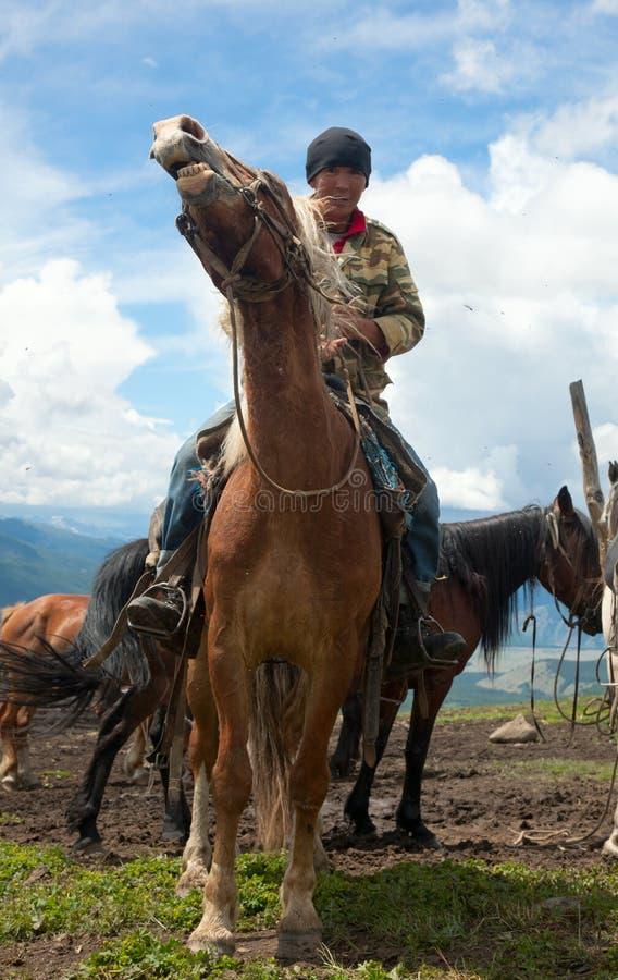 Mongolisk herde fotografering för bildbyråer