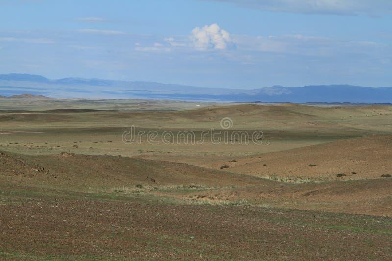 Mongoliskt landskap royaltyfri fotografi