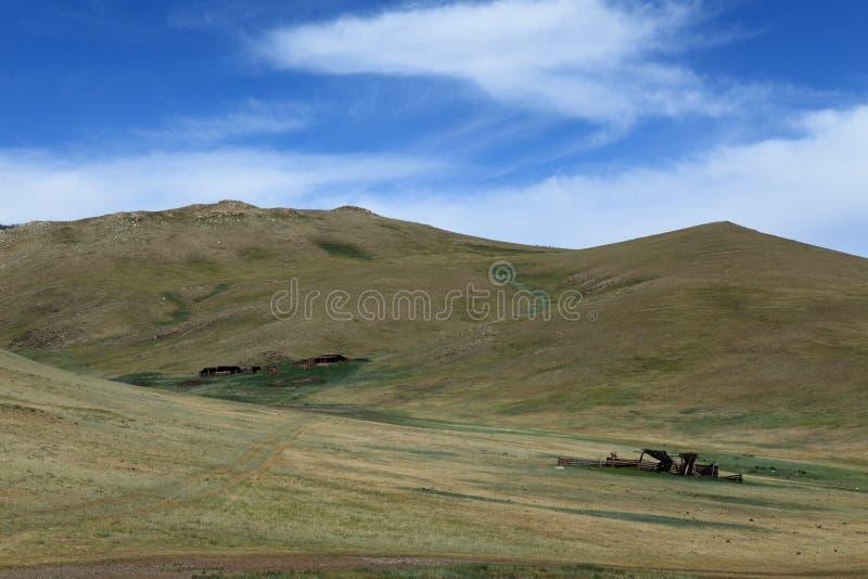 Mongoliskt landskap och natur royaltyfri bild