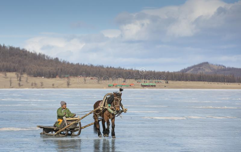 Mongolscy ludzie na zamarzniętym jeziorze z ich koniem saneczkują zdjęcia royalty free