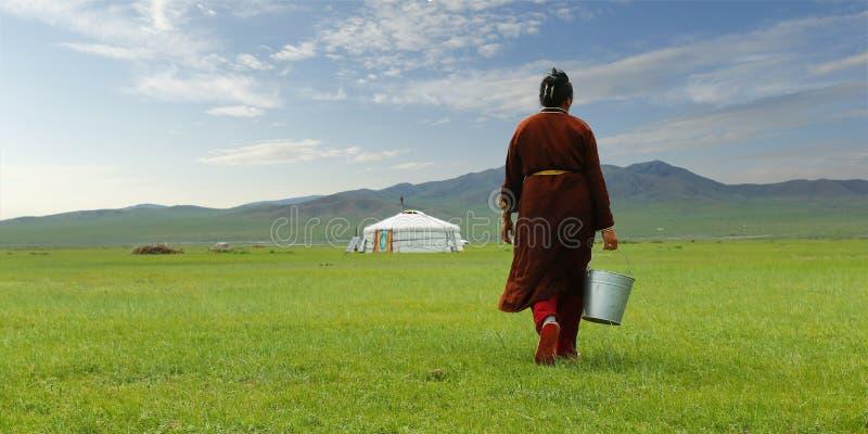 Mongolski rolnik w obszarze trawiastym Mongolia zdjęcia stock