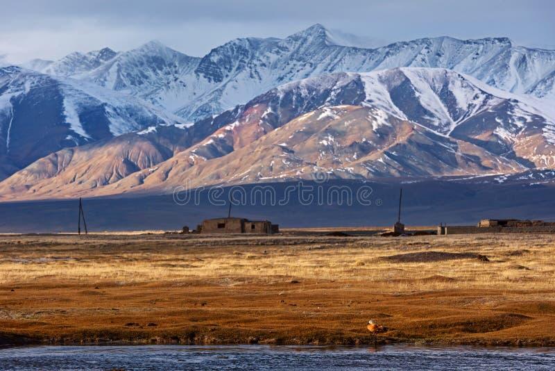 Mongools Altai-landschap royalty-vrije stock afbeelding