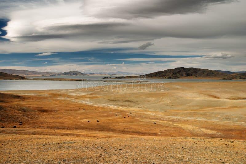 Mongools landschap royalty-vrije stock foto