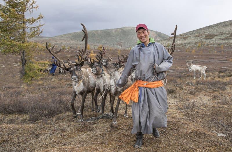 Mongoolse mens in een traditionele deel die met rendieren lopen stock afbeeldingen