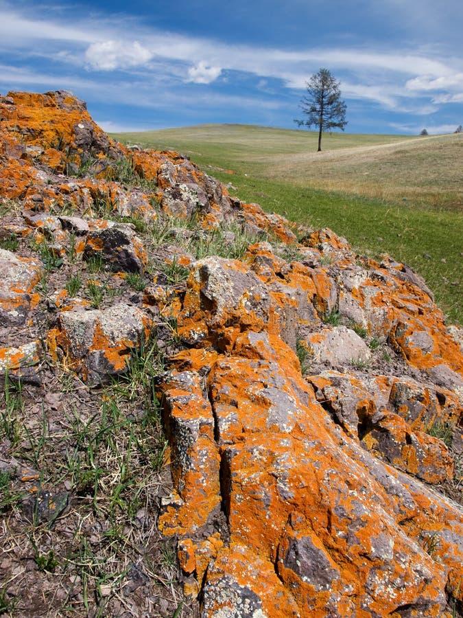 Mongoolse steppe met kleurrijke rotsen royalty-vrije stock foto