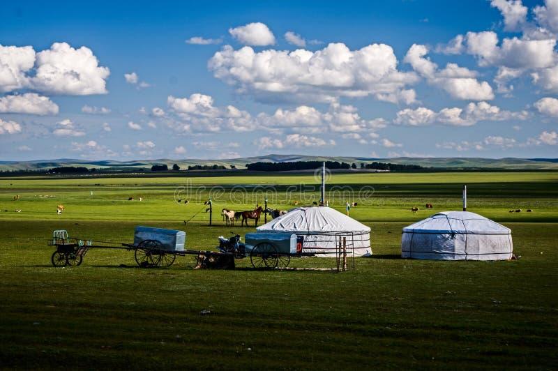 Mongoolse tenten op de prairie stock afbeeldingen