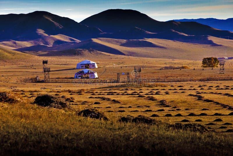 Mongoolse yurt stock foto's