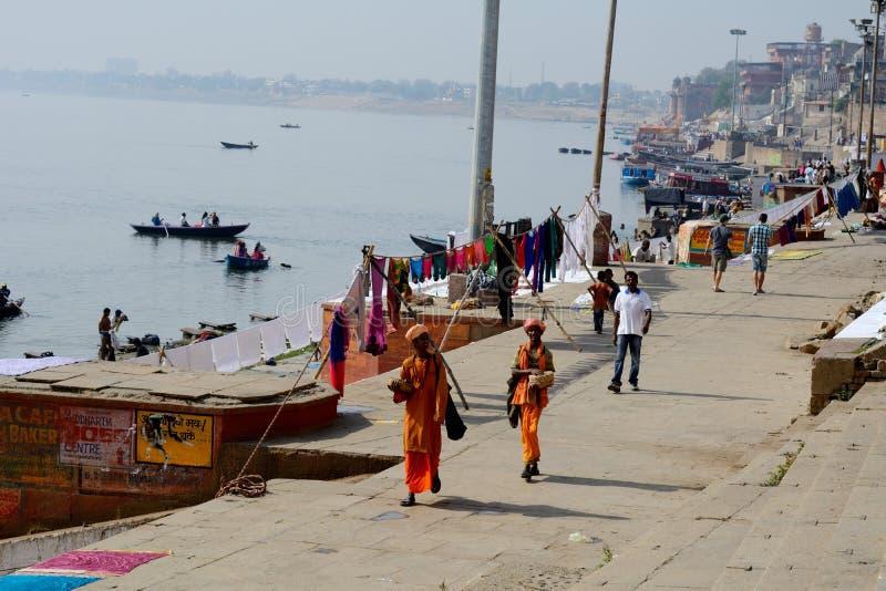 Mongs loopt in bank van Heilige Rivier de Ganges in Varanasi, Uttar Prodesh, India stock foto