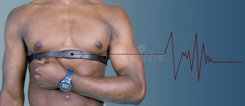 Monitor da frequência cardíaca com pulso imagens de stock royalty free