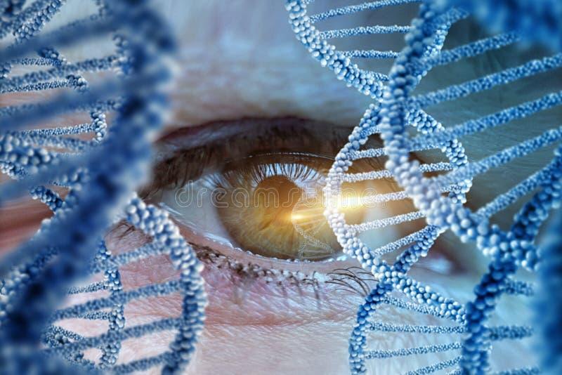 Monitorowanie istoty ludzkiej DNA zdjęcie royalty free