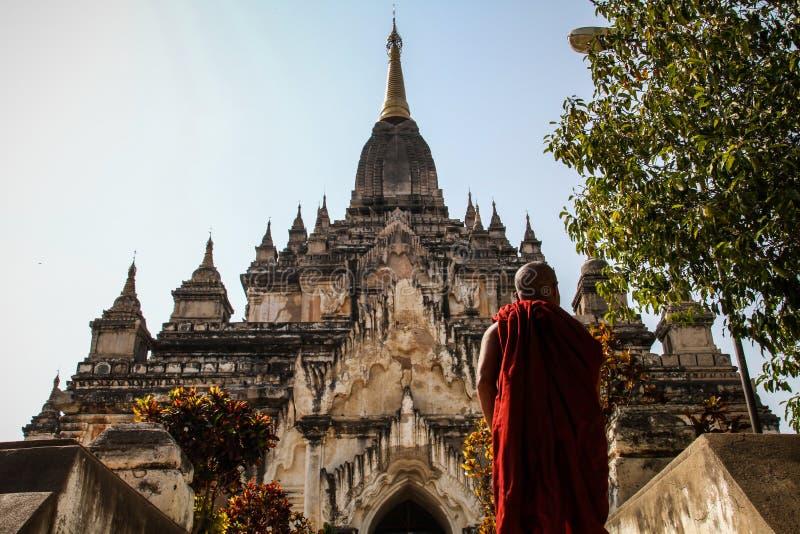 Monje de Bhuddist que va a recolectar sus pensamientos en el templo de Thatbyinnyu, Bagan, región de Mandalay, Myanmar foto de archivo