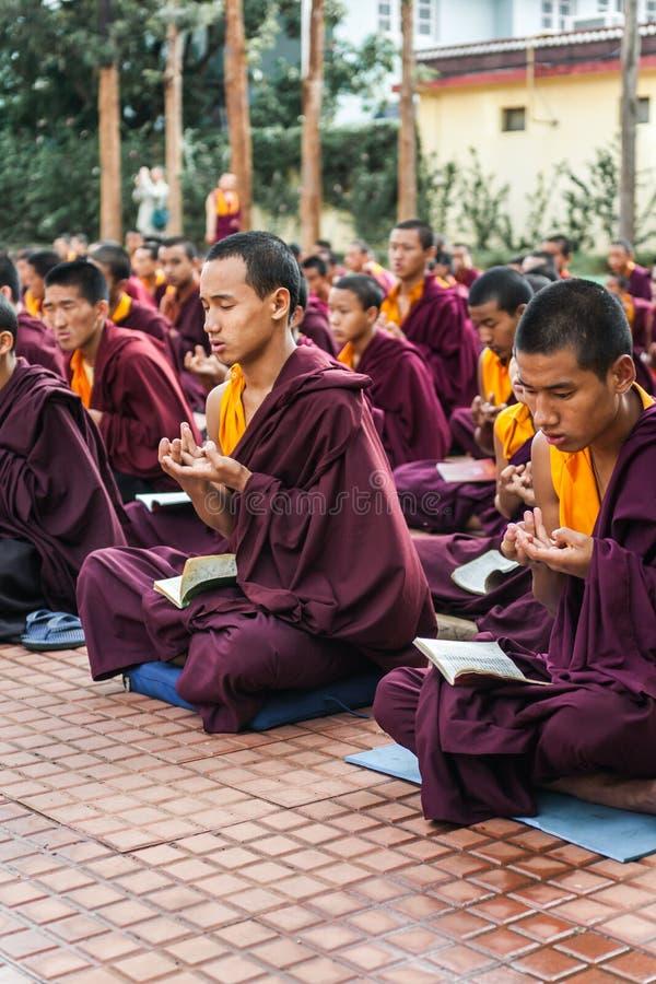 Download Monjes budistas foto editorial. Imagen de rezo, leído - 42435051