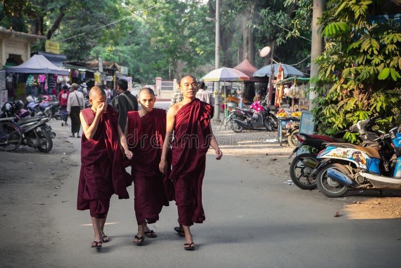 monk fotografía de archivo