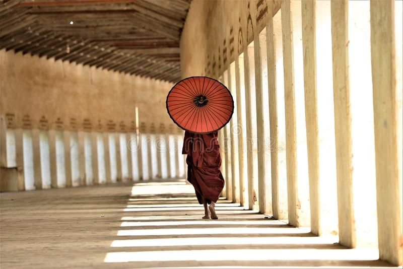 Monk with red umbrella walking in a buddhist temple. Morning sunrays reflect on a monk with a red umbrella and red buddhist costume walking in buddha temple royalty free stock image