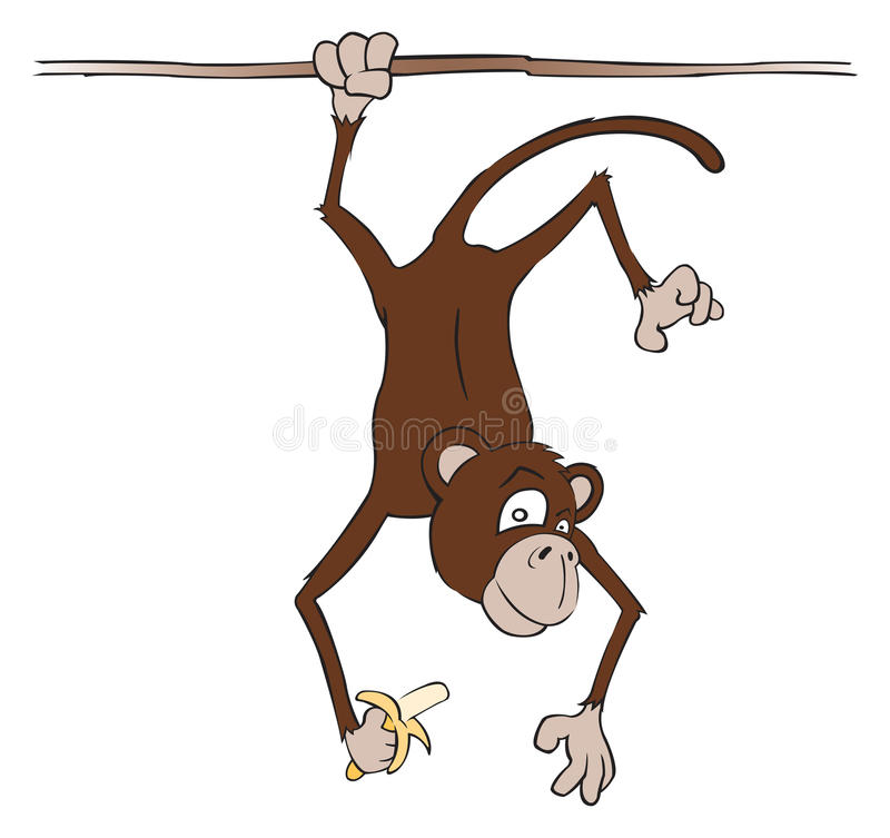Download Monkey stock vector. Image of hang, primate, curious - 17310091