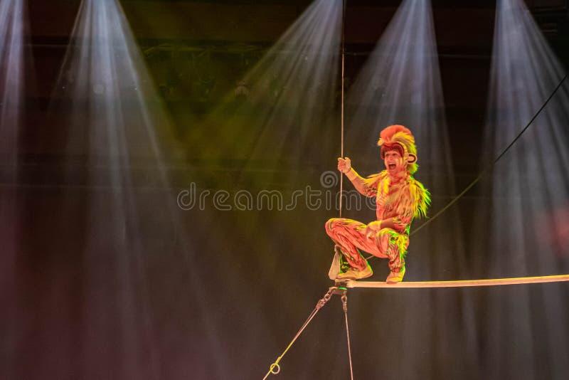 Monkey acrobats in Lion King Festival at Animal Kingdom 44 royalty-vrije stock afbeeldingen