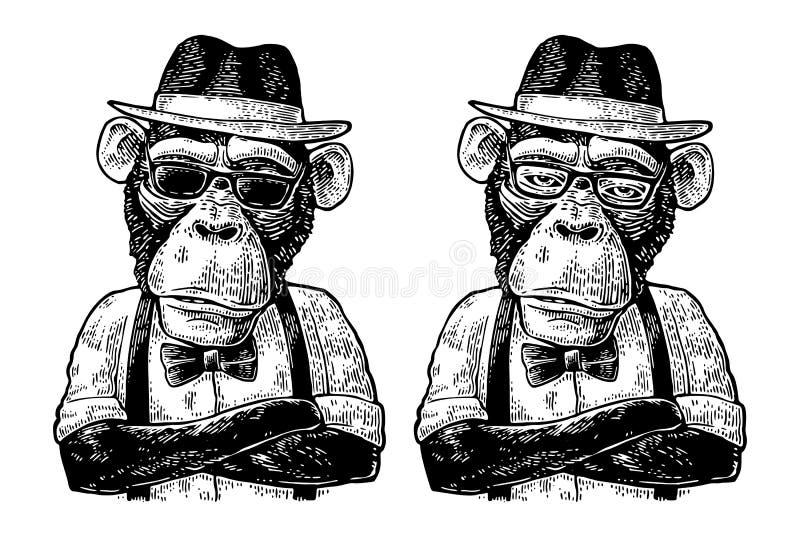 Monkey al inconformista con el crossedin de los brazos en sombrero, camisa, vidrios y corbata de lazo ilustración del vector