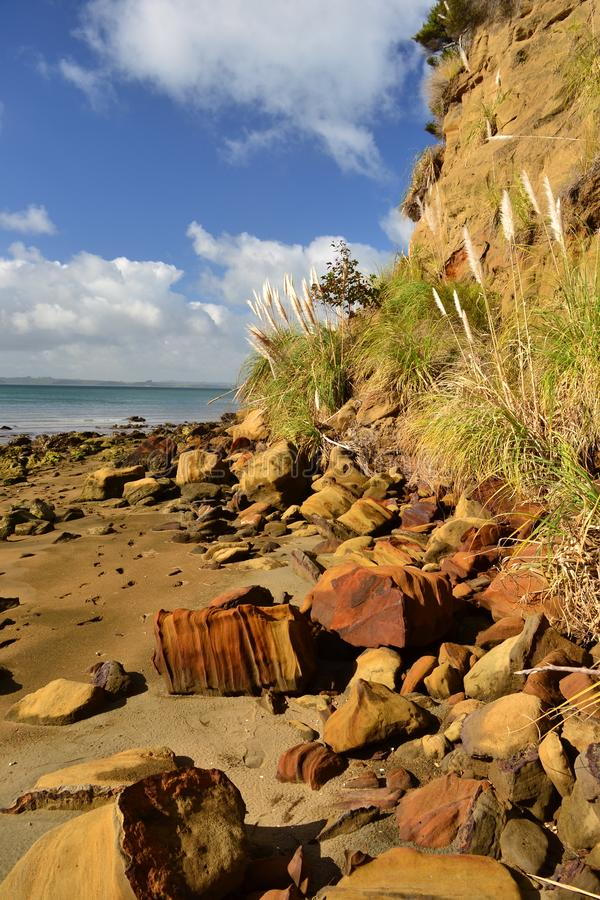 Monkey bay beach, South Head, New Zealand. Low tide beach with colorful rocks, steep cliffs, lonelyness, remote place. New Zealand royalty free stock photo
