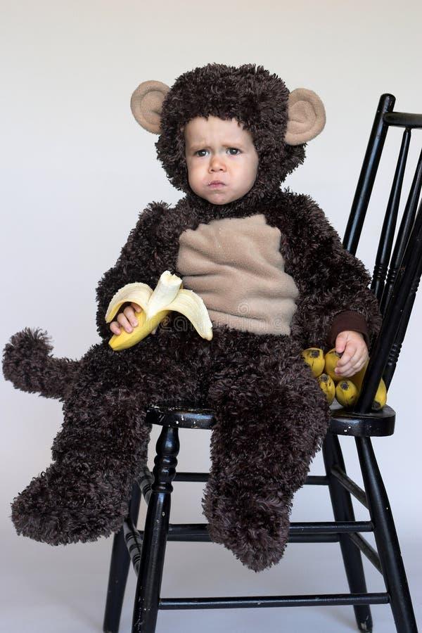 Download Monkey Boy stock image. Image of fresh, gorgeous, adorable - 3393225
