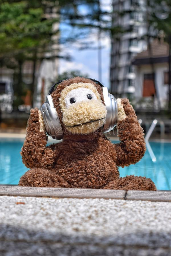 Monkey chilling poolside. Image of soft toy monkey with headphones on cling out by swimming pool in the sun royalty free stock images
