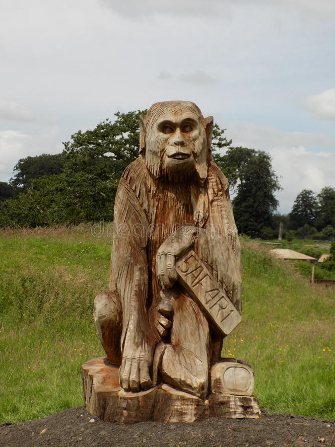 Monkey. Hand calved wooden monkey sculpture stock image