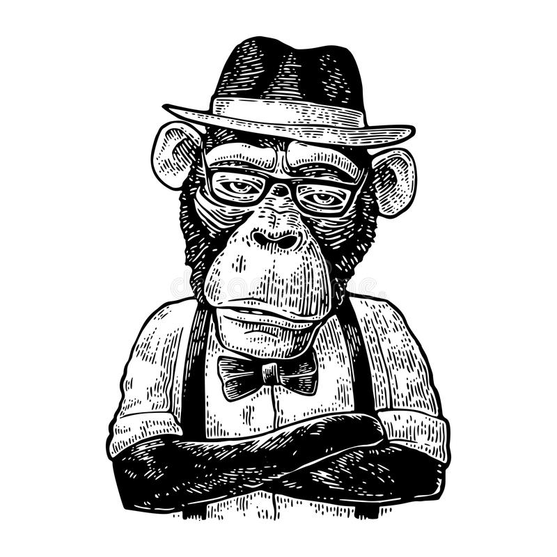 Monkey hipster with arms crossedin in hat, shirt, glasses and bow tie royalty free illustration