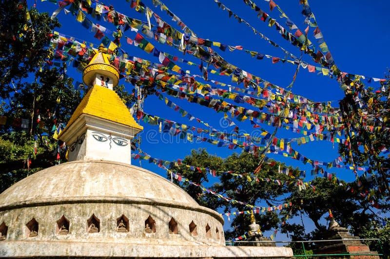 Monkey il tempio con le bandiere buddisti di preghiera, Kathmandu fotografia stock libera da diritti