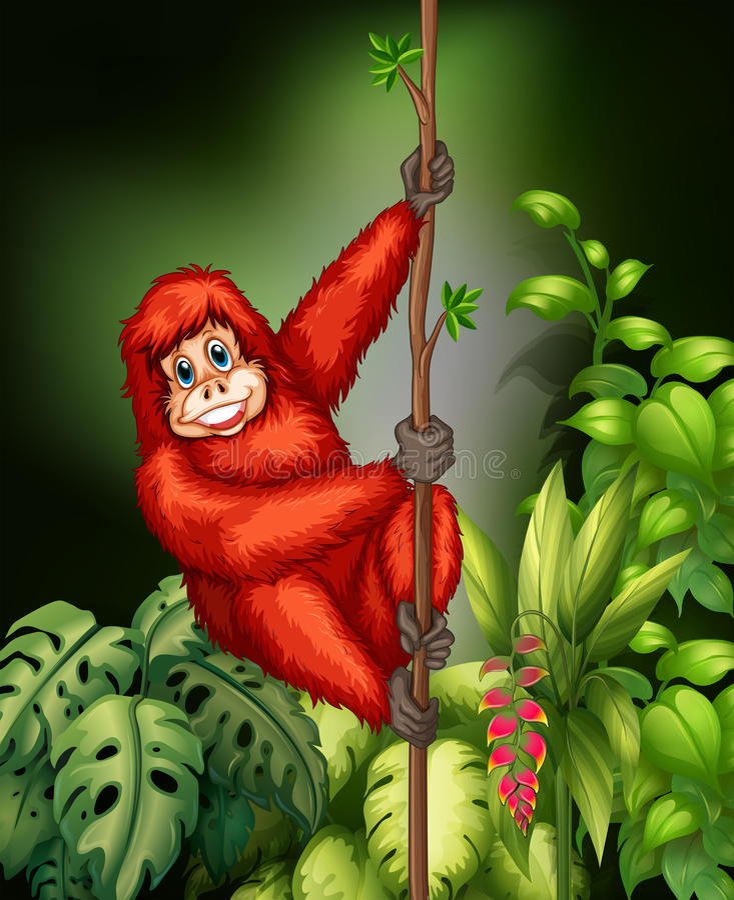 Monkey in jungle royalty free illustration