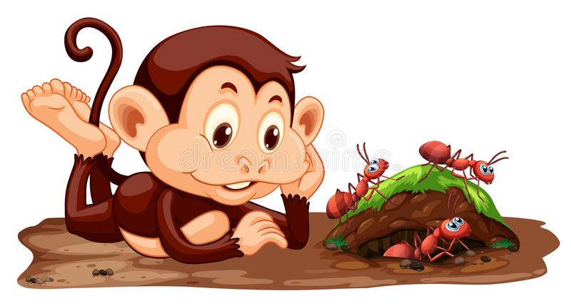 A monkey looking at ants. Illustration royalty free illustration