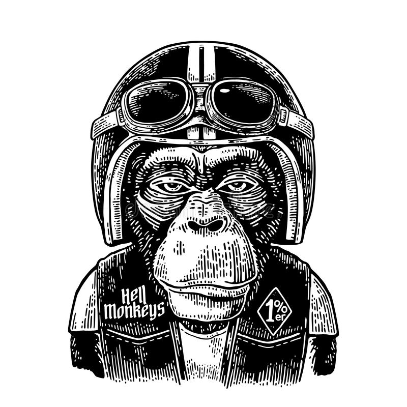 Monkey in the motorcycle helmet and glasses. Vintage black engraving. Monkey in the motorcycle helmet and glasses. Hell monkeys and 1 lettering on the waistcoat vector illustration