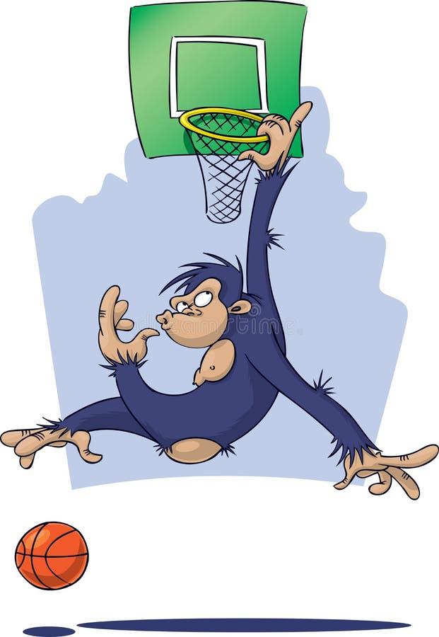 Download Monkey Playing Basketball Stock Photography - Image: 4976602