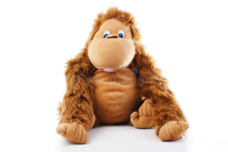 Monkey plush toy in studio. brown monkey,cute monkey,fake monkey,plush monkey,toy monkey,chimpanzee,jocko,gorilla. Monkey plush toy in studio. Brown monkey cute stock images