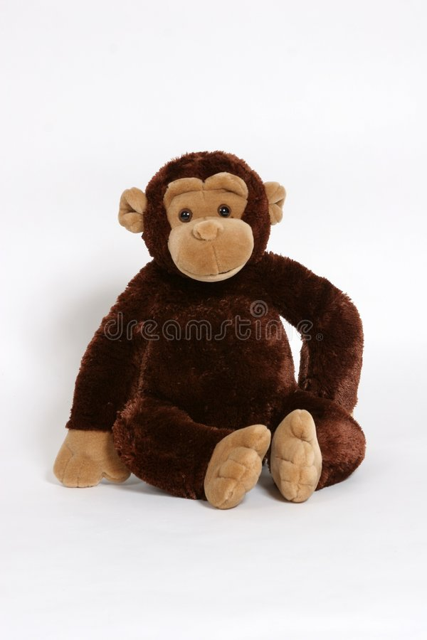 Monkey see, Monkey do. A stuffed monkey posing for the camera royalty free stock photos