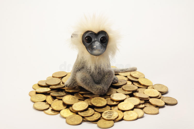 Monkey is sitting on a pile of gold coins. stock photo