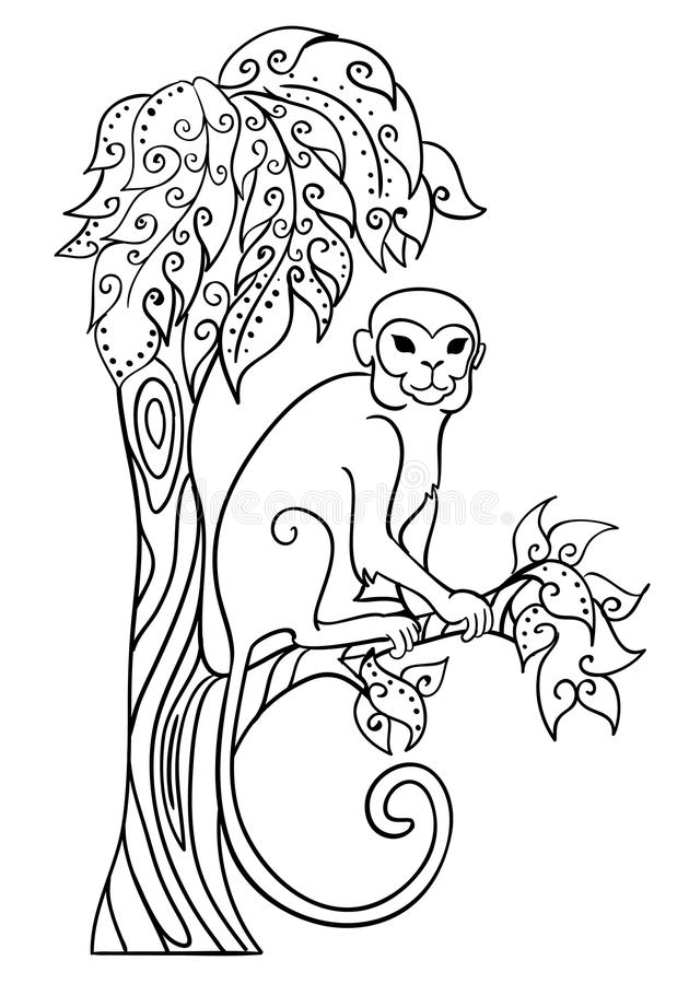 Monkey Sitting On A Tree Stock Vector Image Of Contour