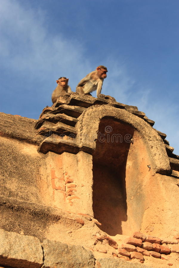 Download Monkey Temple (Hanuman) In Hampi, India. Stock Image - Image: 28882481