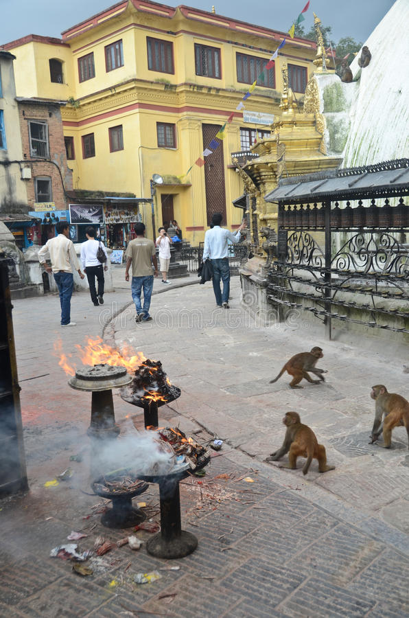 Monkey Temple in Nepal royalty free stock images